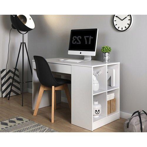 Компьютерный стол Пауль